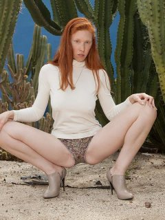 Natural redhead Karla Meyers in shorts teasing